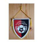 FC Sargans Wimpel